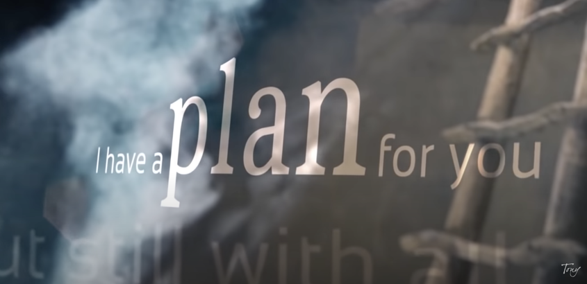 I Have a Plan For You Vlog